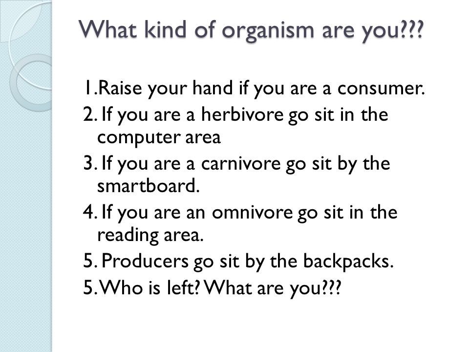 What kind of organism are you??.1.Raise your hand if you are a consumer.