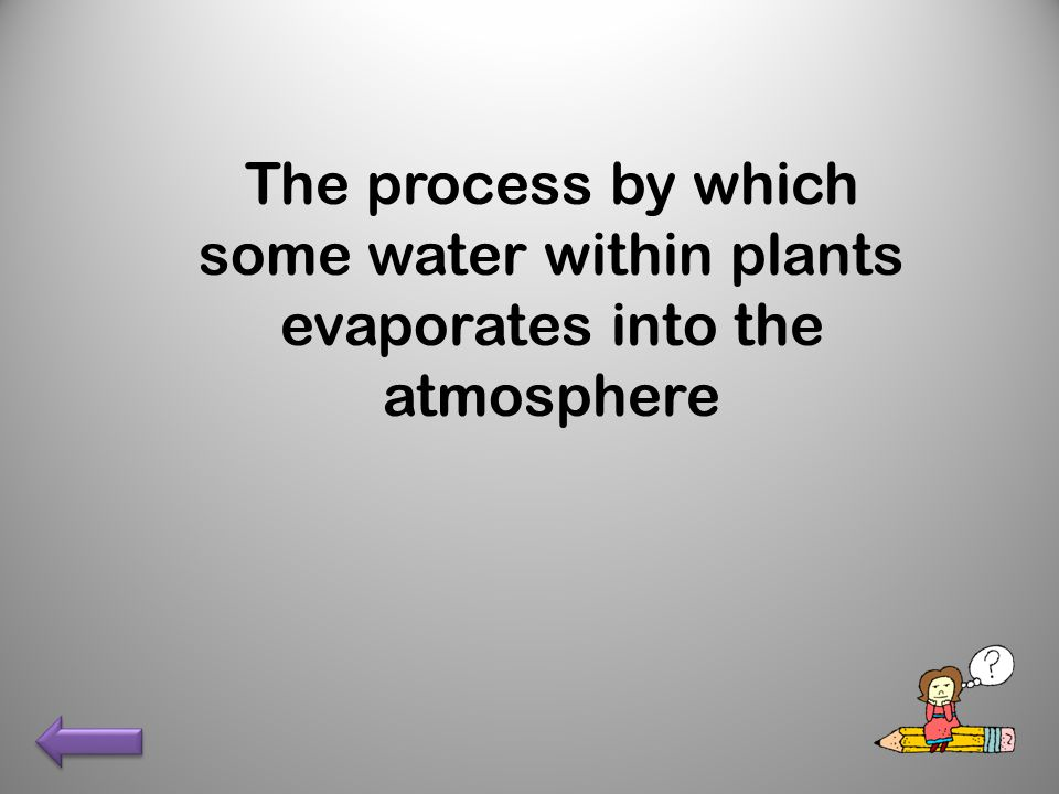 The process by which some water within plants evaporates into the atmosphere