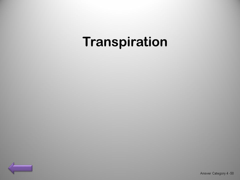 Transpiration Answer Category 4 -50