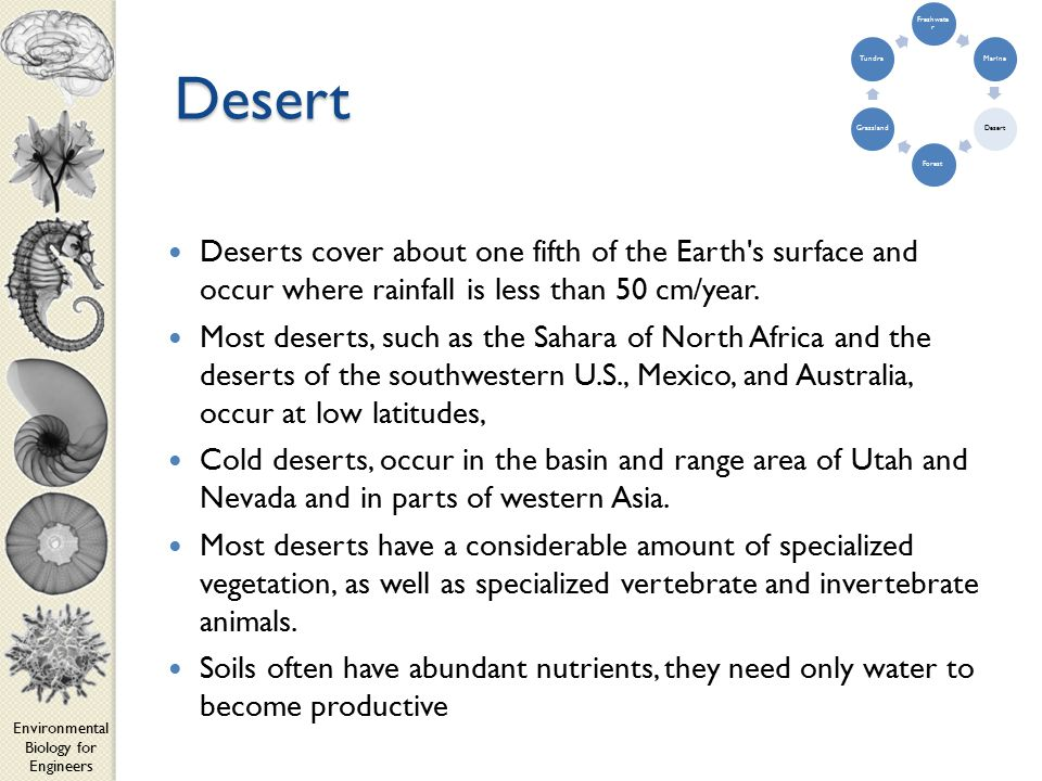 Environmental Biology for Engineers Desert Deserts cover about one fifth of the Earth s surface and occur where rainfall is less than 50 cm/year.