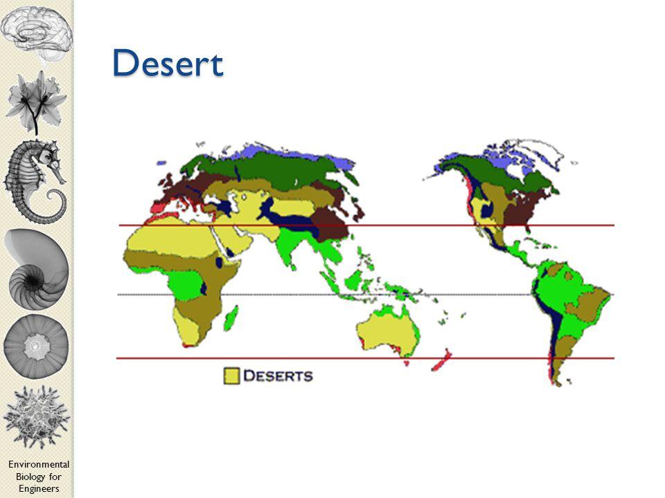 Environmental Biology for Engineers Desert