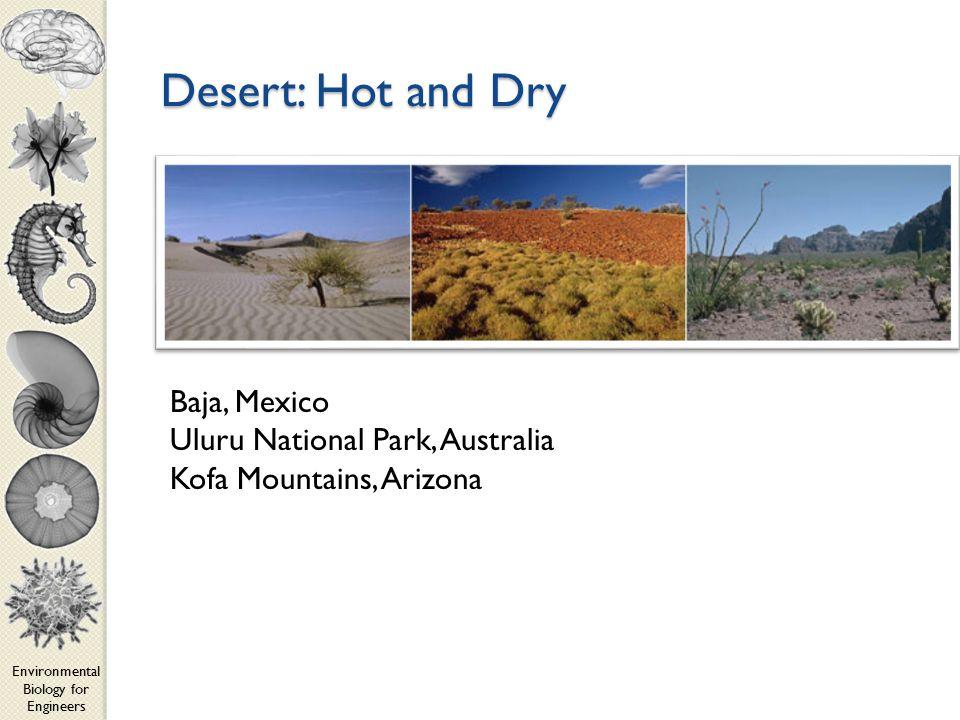Environmental Biology for Engineers Desert: Hot and Dry Baja, Mexico Uluru National Park, Australia Kofa Mountains, Arizona