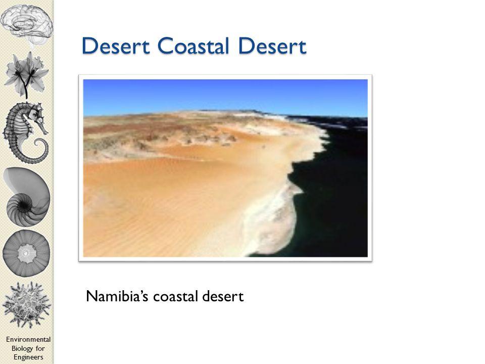 Environmental Biology for Engineers Desert Coastal Desert Namibia's coastal desert
