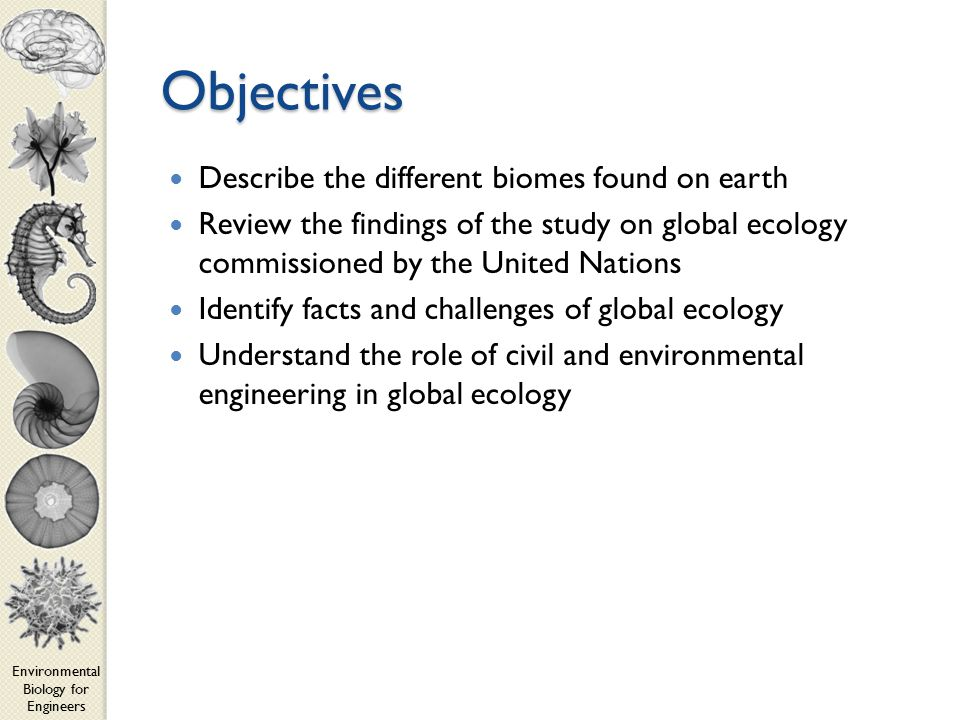 Environmental Biology for Engineers Objectives Describe the different biomes found on earth Review the findings of the study on global ecology commissioned by the United Nations Identify facts and challenges of global ecology Understand the role of civil and environmental engineering in global ecology