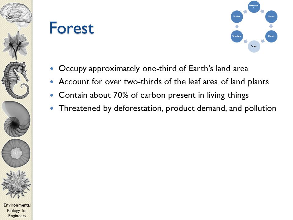 Environmental Biology for Engineers Forest Occupy approximately one-third of Earth s land area Account for over two-thirds of the leaf area of land plants Contain about 70% of carbon present in living things Threatened by deforestation, product demand, and pollution Freshwate r MarineDesertForestGrasslandTundra