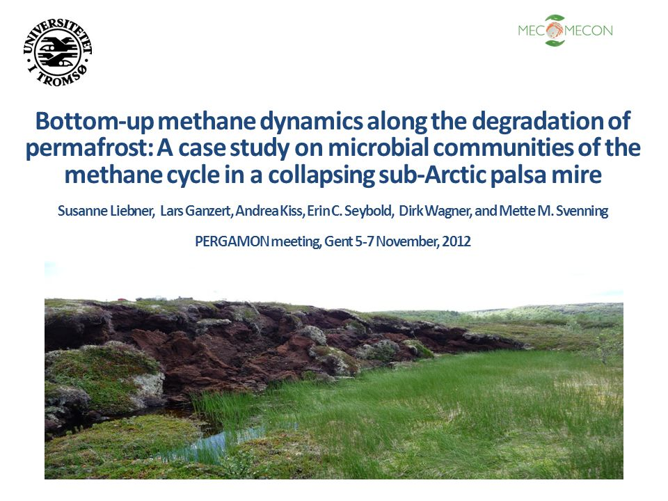Bottom-up methane dynamics along the degradation of permafrost: A case study on microbial communities of the methane cycle in a collapsing sub-Arctic