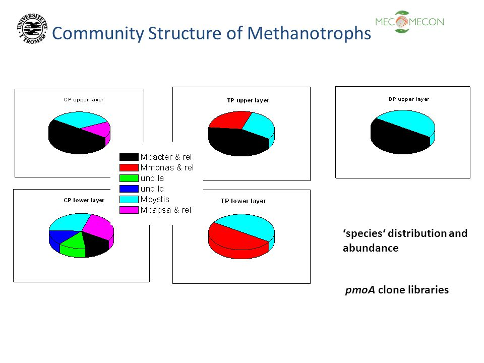 Community Structure of Methanotrophs pmoA clone libraries 'species' distribution and abundance