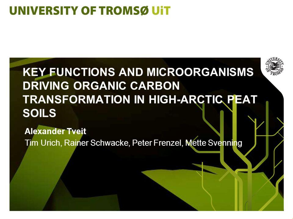 KEY FUNCTIONS AND MICROORGANISMS DRIVING ORGANIC CARBON TRANSFORMATION IN HIGH-ARCTIC PEAT SOILS Alexander Tveit Tim Urich, Rainer Schwacke, Peter Frenzel, Mette Svenning