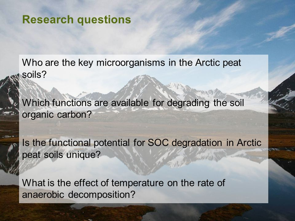 Research questions Who are the key microorganisms in the Arctic peat soils? Which functions are available for degrading the soil organic carbon? Is th