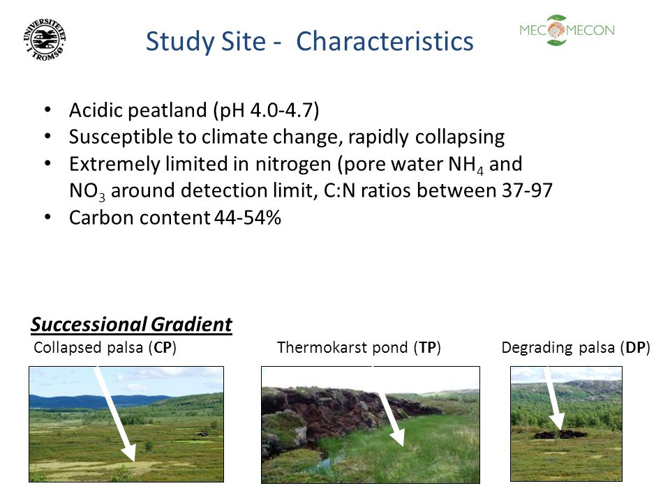 Acidic peatland (pH 4.0-4.7) Susceptible to climate change, rapidly collapsing Extremely limited in nitrogen (pore water NH 4 and NO 3 around detectio