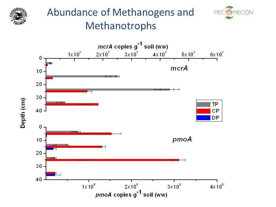 Abundance of Methanogens and Methanotrophs