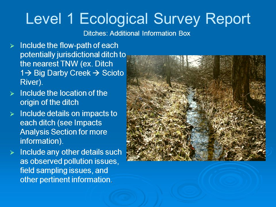 Level 1 Ecological Survey Report   Include the flow-path of each potentially jurisdictional ditch to the nearest TNW (ex.