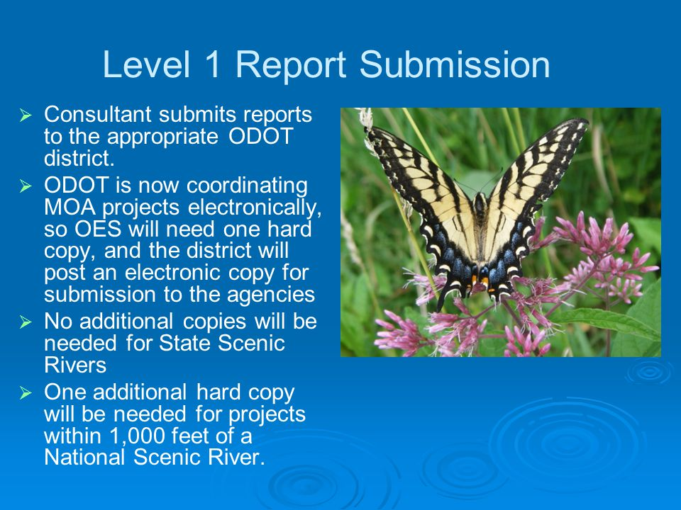 Level 1 Report Submission   Consultant submits reports to the appropriate ODOT district.