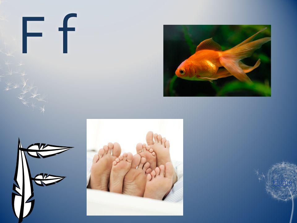 F fF f