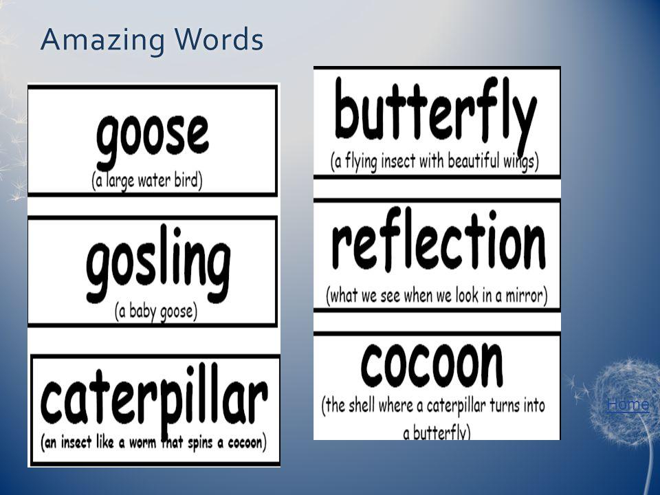 Home Amazing WordsAmazing Words