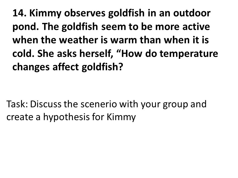 14. Kimmy observes goldfish in an outdoor pond.