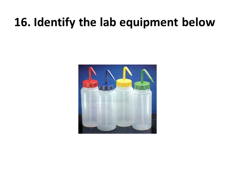 16. Identify the lab equipment below