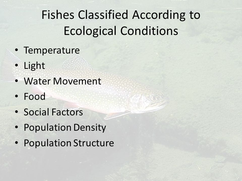 Fishes Classified According to Ecological Conditions Temperature Light Water Movement Food Social Factors Population Density Population Structure