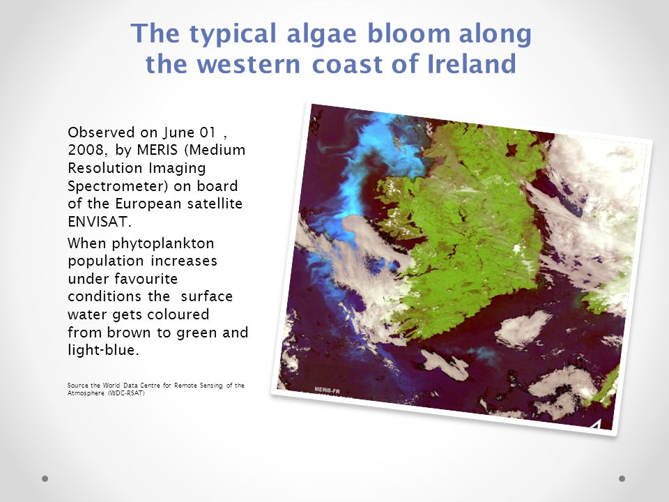 The typical algae bloom along the western coast of Ireland Observed on June 01, 2008, by MERIS (Medium Resolution Imaging Spectrometer) on board of the European satellite ENVISAT.