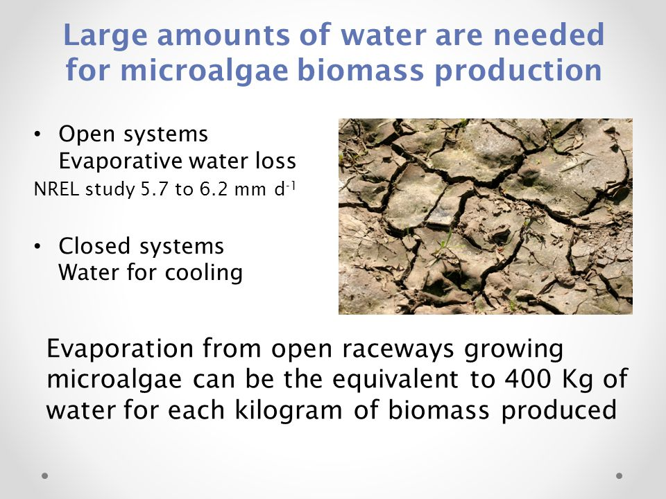 Large amounts of water are needed for microalgae biomass production Open systems Evaporative water loss NREL study 5.7 to 6.2 mm d -1 Closed systems W