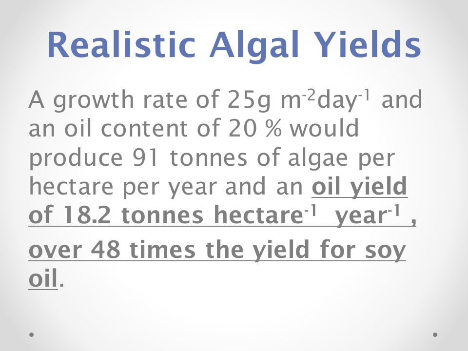 Realistic Algal Yields A growth rate of 25g m -2 day -1 and an oil content of 20 % would produce 91 tonnes of algae per hectare per year and an oil yi