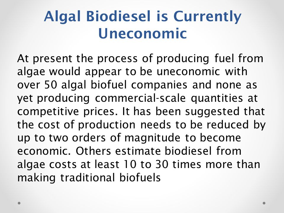 Algal Biodiesel is Currently Uneconomic At present the process of producing fuel from algae would appear to be uneconomic with over 50 algal biofuel companies and none as yet producing commercial-scale quantities at competitive prices.