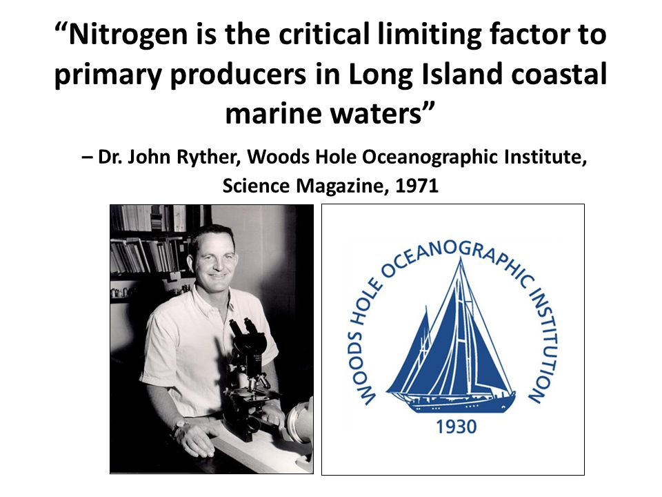 Nitrogen is the critical limiting factor to primary producers in Long Island coastal marine waters – Dr.