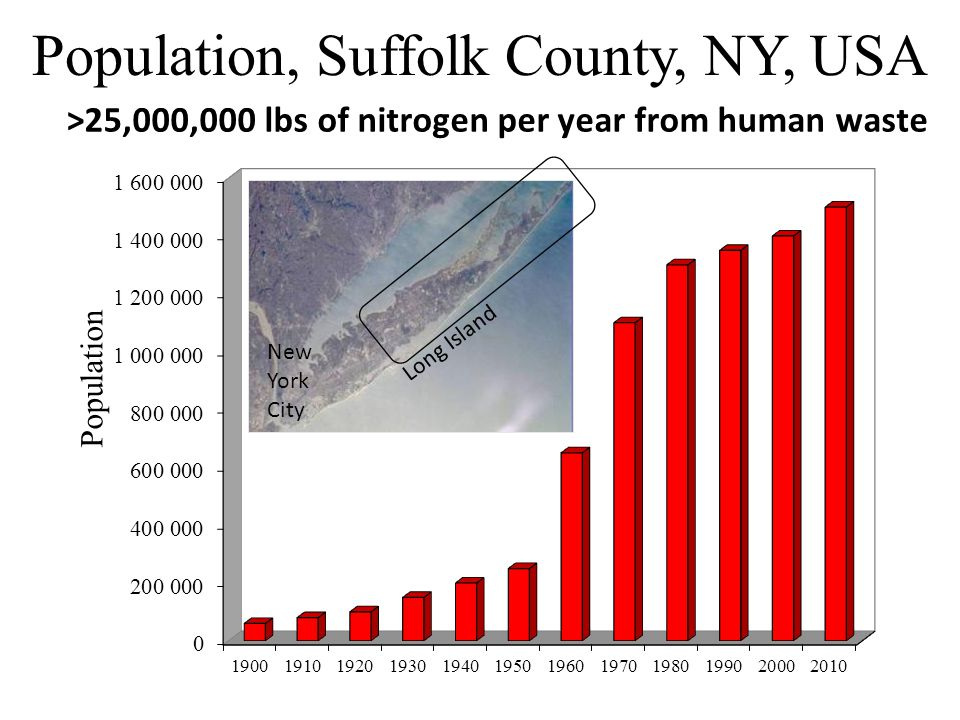 Septic tank Water table / aquifer Nitrogen In Suffolk County: 70% of homes have septic tanks or cesspools.