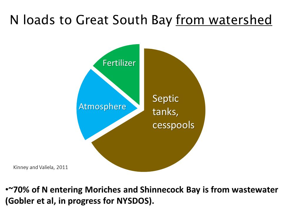 N loads to Great South Bay from watershed ~70% of N entering Moriches and Shinnecock Bay is from wastewater (Gobler et al, in progress for NYSDOS).