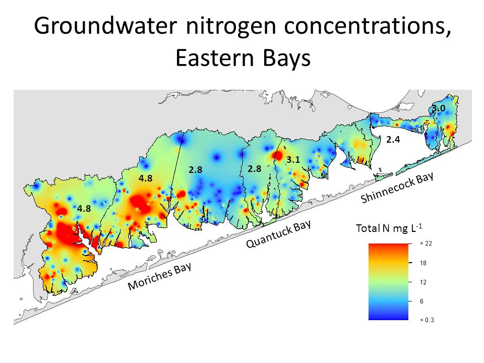 4.8 2.8 3.1 2.4 3.0 Groundwater nitrogen concentrations, Eastern Bays Total N mg L -1 Moriches Bay Shinnecock Bay Quantuck Bay