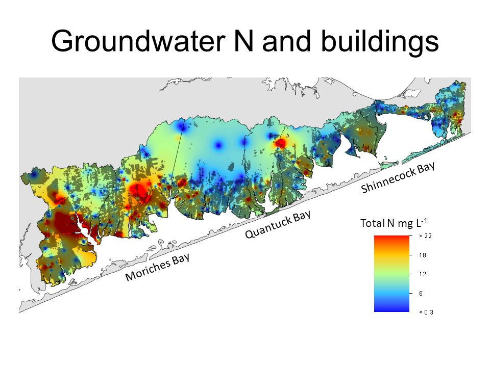 Groundwater N and buildings Total N mg L -1 Moriches Bay Shinnecock Bay Quantuck Bay