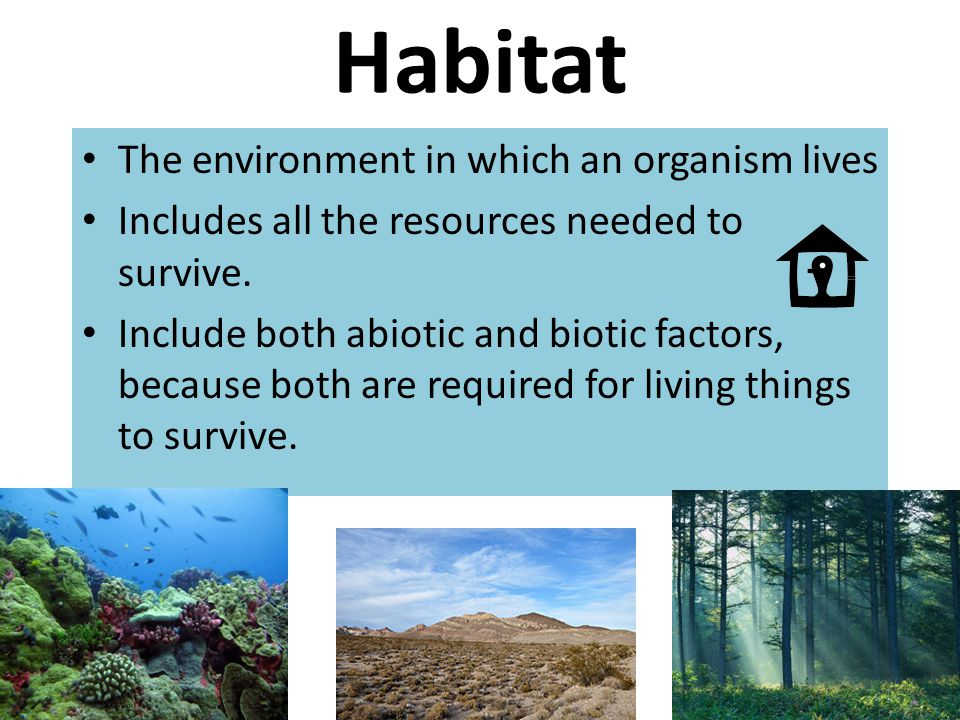 Habitat The environment in which an organism lives Includes all the resources needed to survive. Include both abiotic and biotic factors, because both