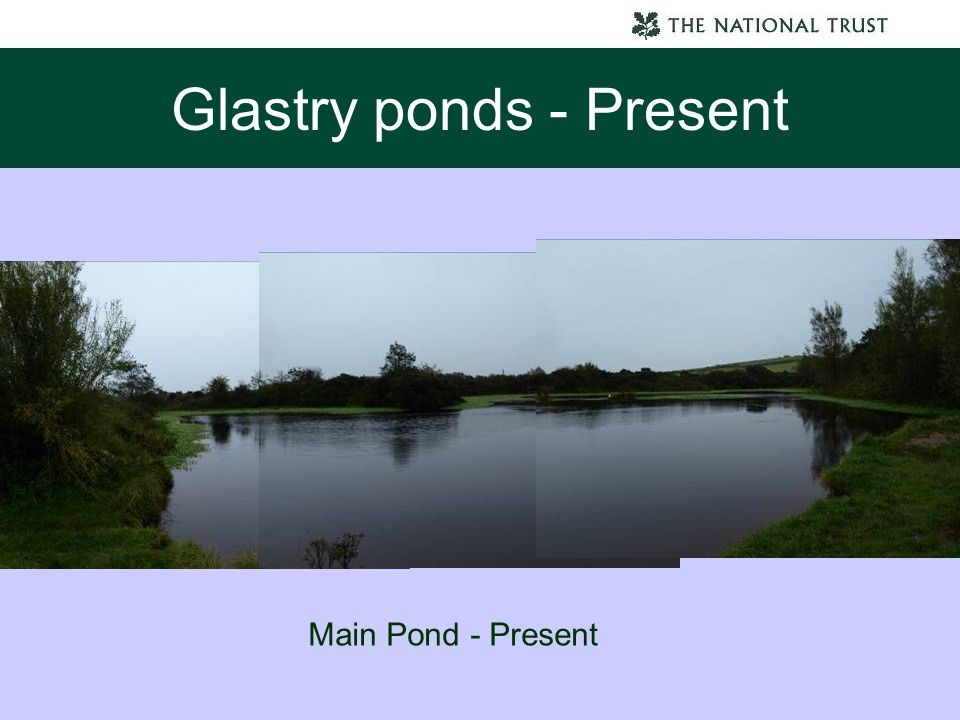 Glastry ponds - Present Main Pond - Present