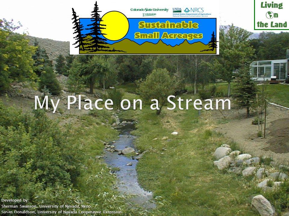 Manage livestock near streams