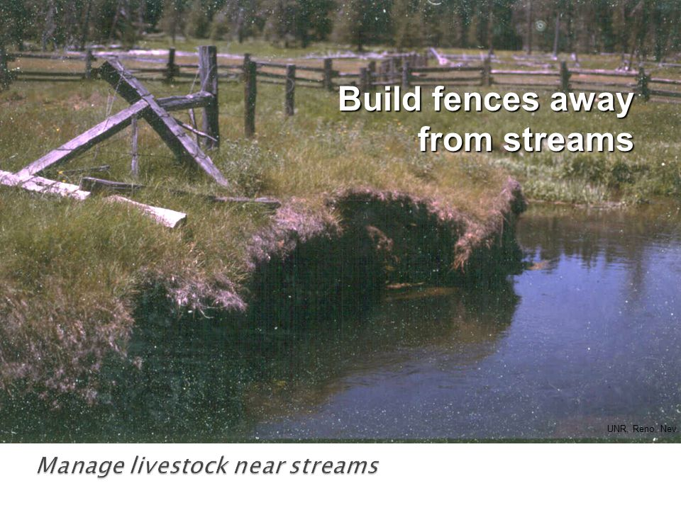 Build fences away from streams UNR, Reno, Nev.