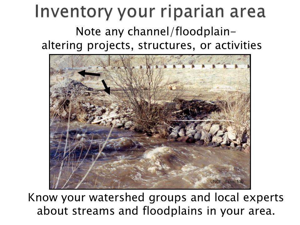 Note any channel/floodplain- altering projects, structures, or activities UNCE, Reno, Nev.