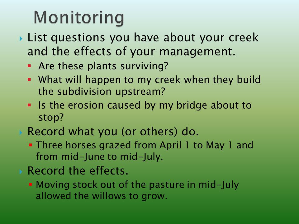  List questions you have about your creek and the effects of your management.
