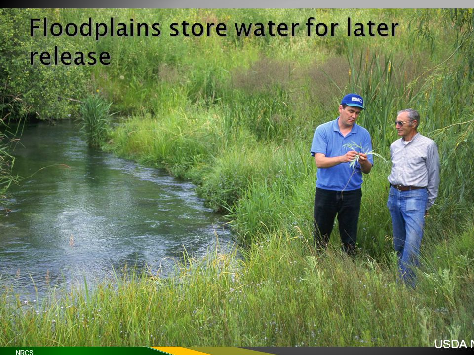  Flow rate and stagnation  Mosquito habitat  Disease UNCE, Reno, Nev.