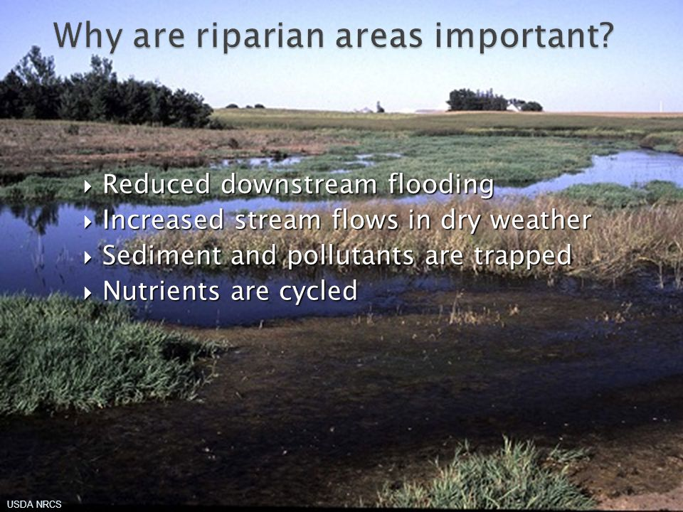 UNCE, Reno, Nev. If you live in a floodplain, get insurance
