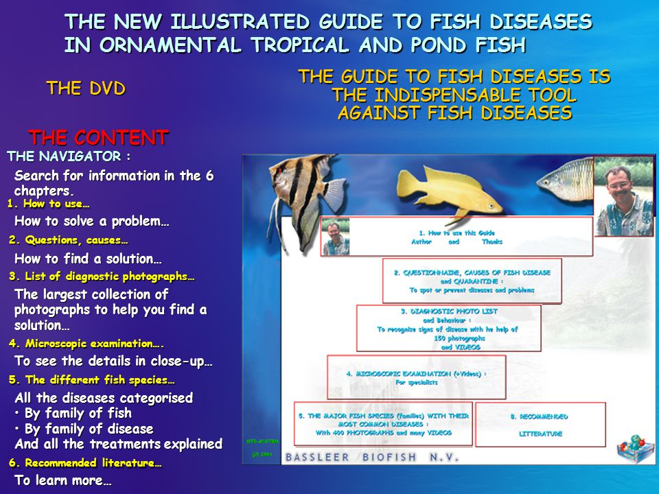 THE NEW ILLUSTRATED GUIDE TO FISH DISEASES IN ORNAMENTAL TROPICAL AND POND FISH THE DISEASES THE DVD The fish species and their diseases… All you want to know about fish diseases is illustrated in the DVD with 1000 photographs and 65 videos.