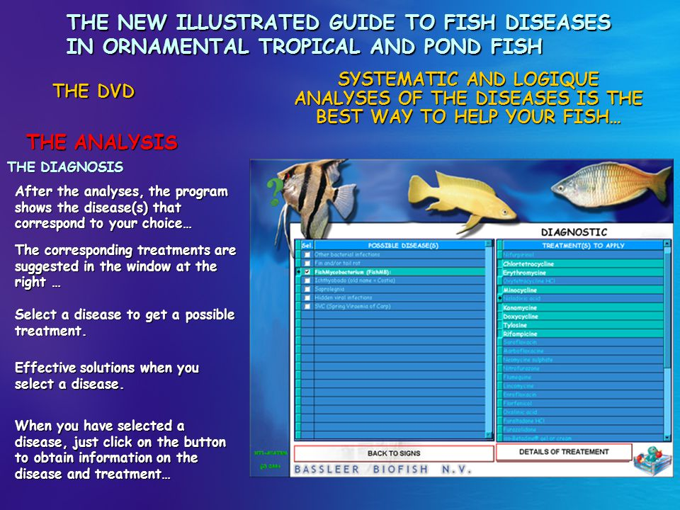 THE NEW ILLUSTRATED GUIDE TO FISH DISEASES IN ORNAMENTAL TROPICAL AND POND FISH THE ANALYSIS THE DVD THE CARE The program shows the selected diseases and gives all possible treatments currently available.