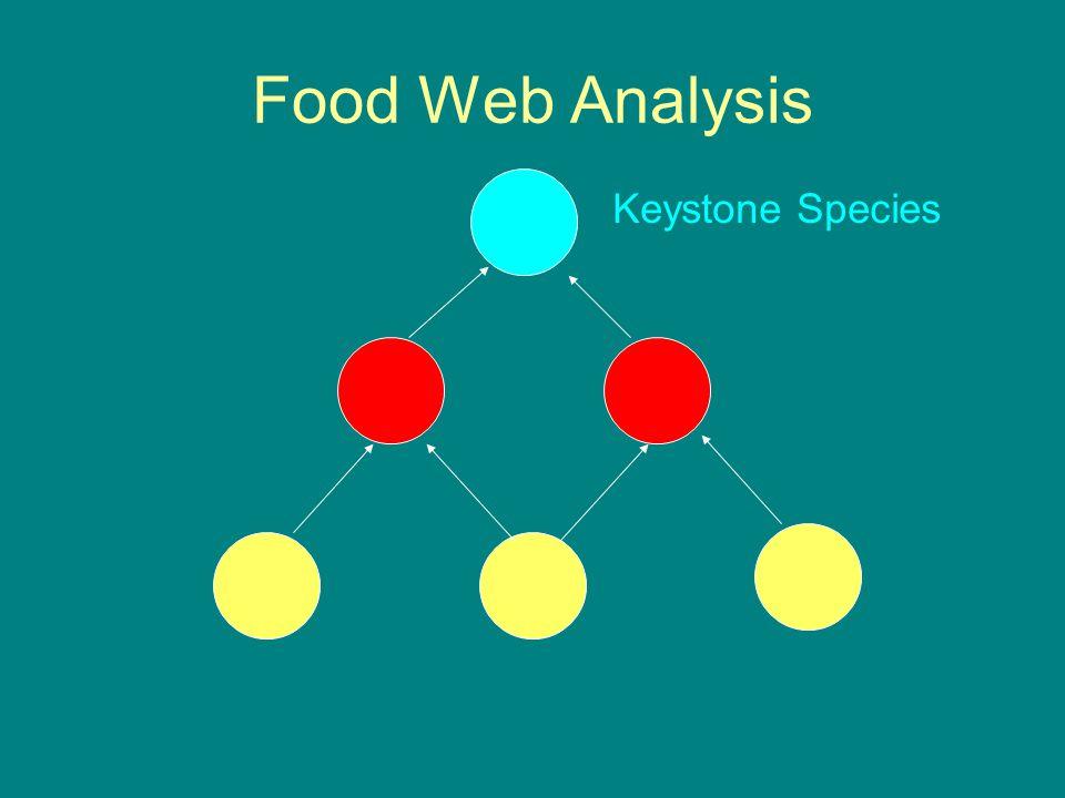 Food Web Analysis Keystone Species