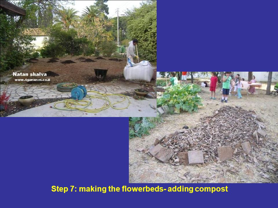 Step 7: making the flowerbeds- adding compost