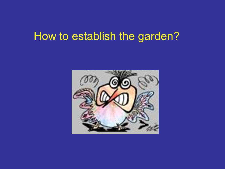 How to establish the garden