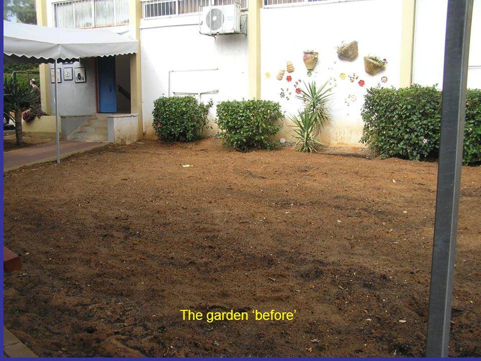 The garden 'before'