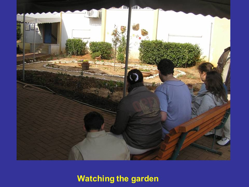 Watching the garden