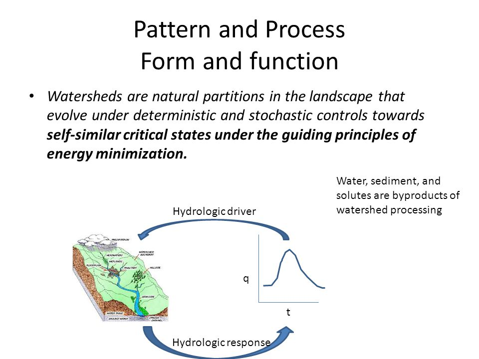 Pattern and Process Form and function Watersheds are natural partitions in the landscape that evolve under deterministic and stochastic controls towar