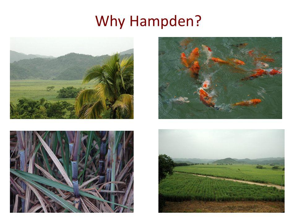 Why Hampden