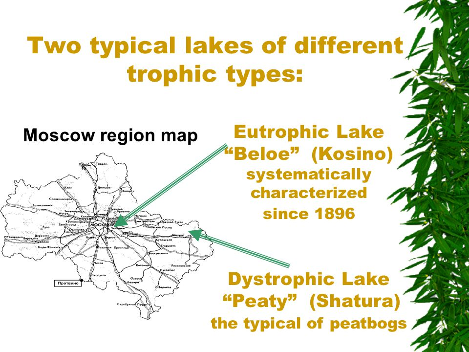 "Two typical lakes of different trophic types: Moscow region map Eutrophic Lake ""Beloe"" (Kosino) systematically characterized since 1896 Dystrophic Lak"