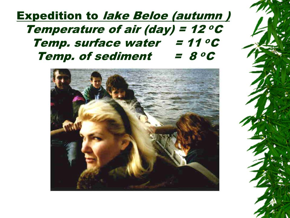 Expedition to lake Beloe (autumn ) Temperature of air (day) = 12 o C Temp. surface water = 11 o C Temp. of sediment = 8 o C